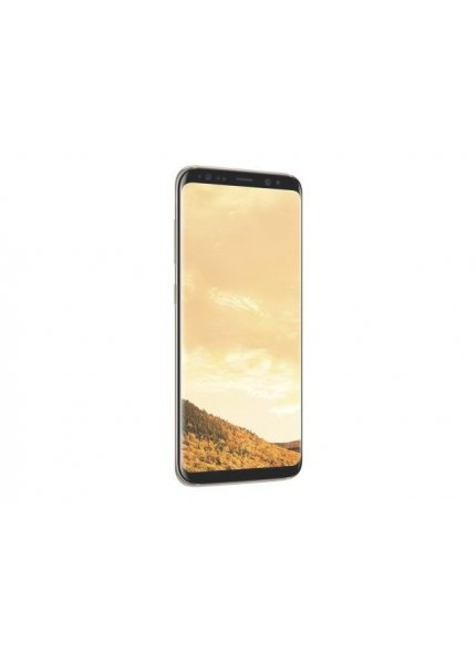 Galaxy S8 Plus 64GB Or